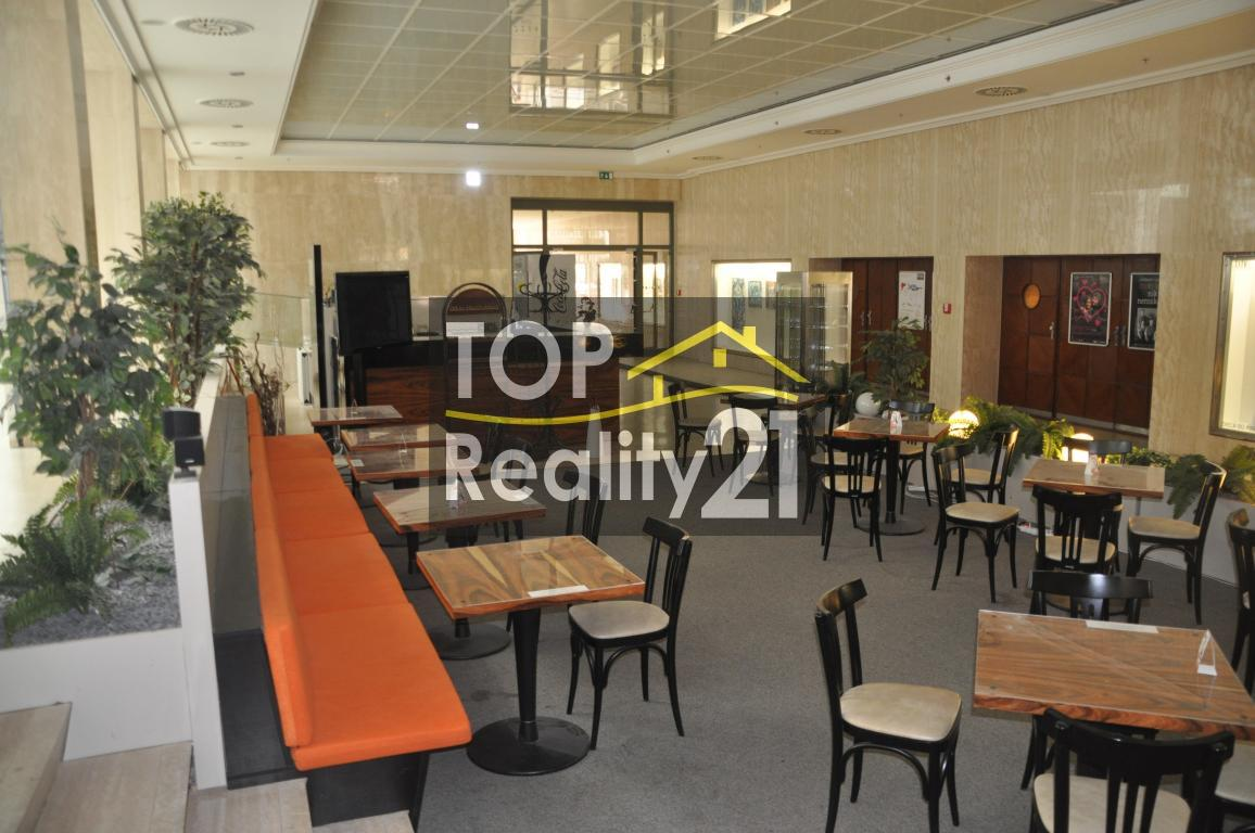 RENT, well run cafe in the city center, City Gate building, 113 m2